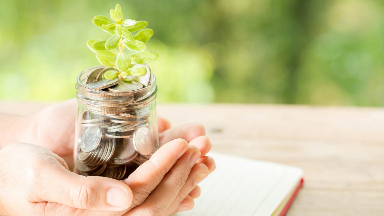Woman hand holding plant growing from coins bottle in the on blurred green natural background